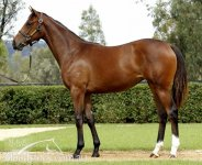 MAGIC MILLIONS PAID UP FILLY