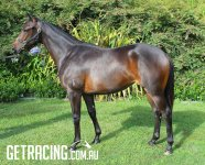 Very Photogenic Filly - Attractive, Athletic and a Genuine Oaks & Guineas Contender