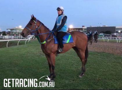 Solo Flight  - Track work at Caulfield