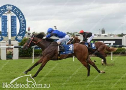General Assault winning at Doomben