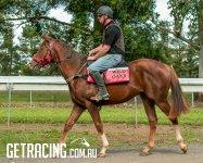 Under Saddle 11-5